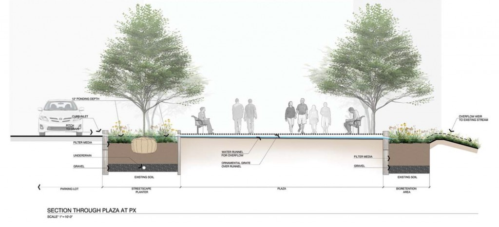 Stormwater-plantings-the-la-group